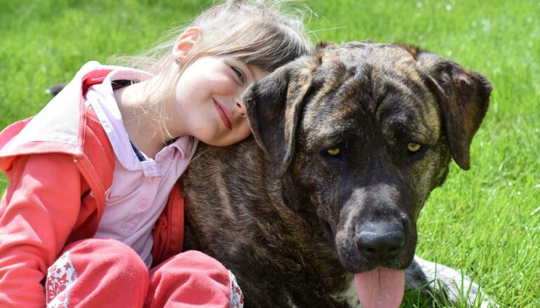 Humane education - children and pets